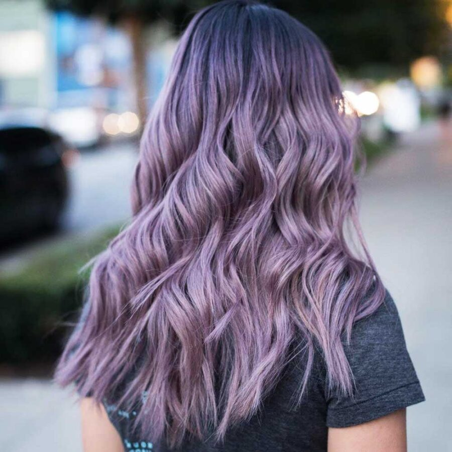 STARGAZER Purple