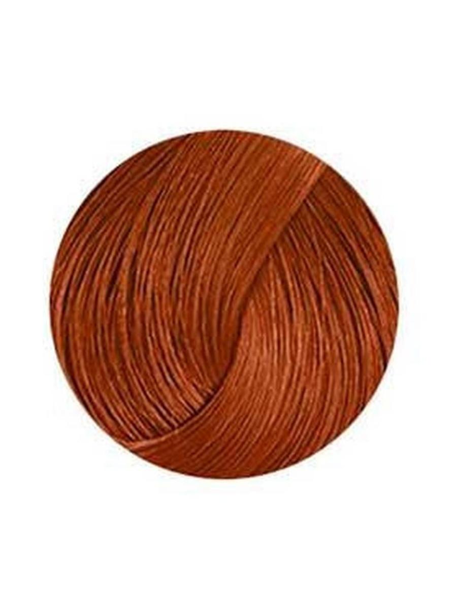 ANTHOCYANIN 230 W03 - Chocolate Brown