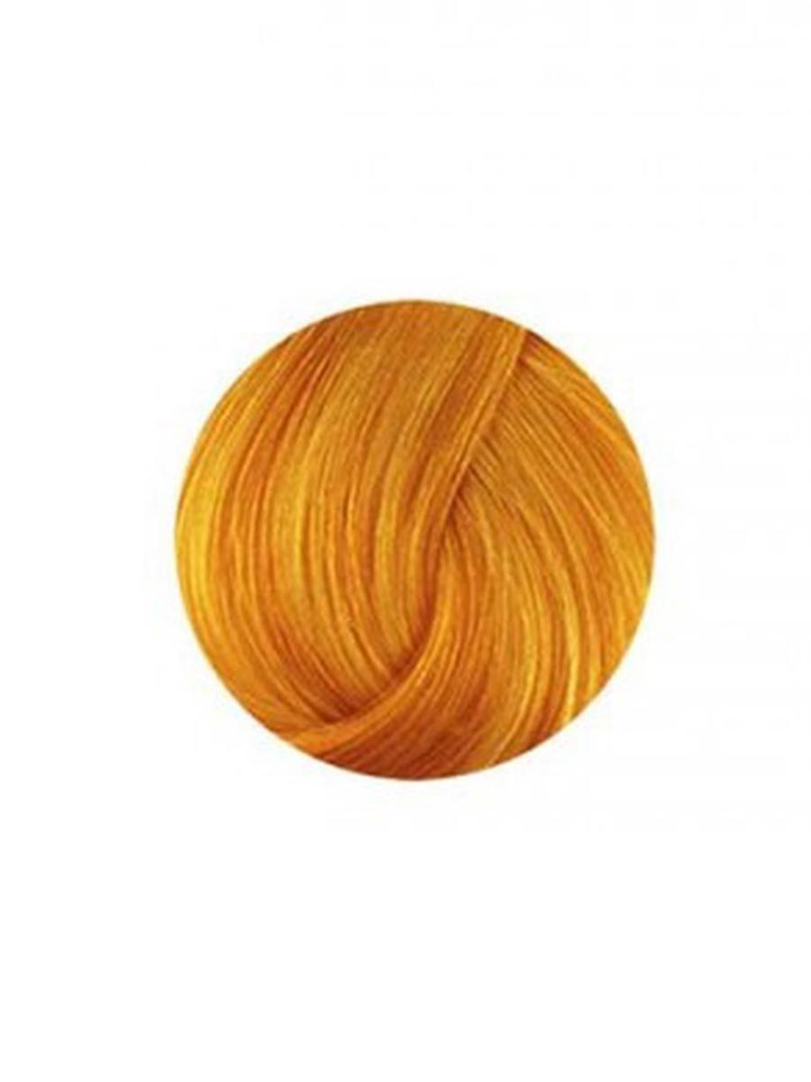 ANTHOCYANIN 230 W04 - Honey Brown