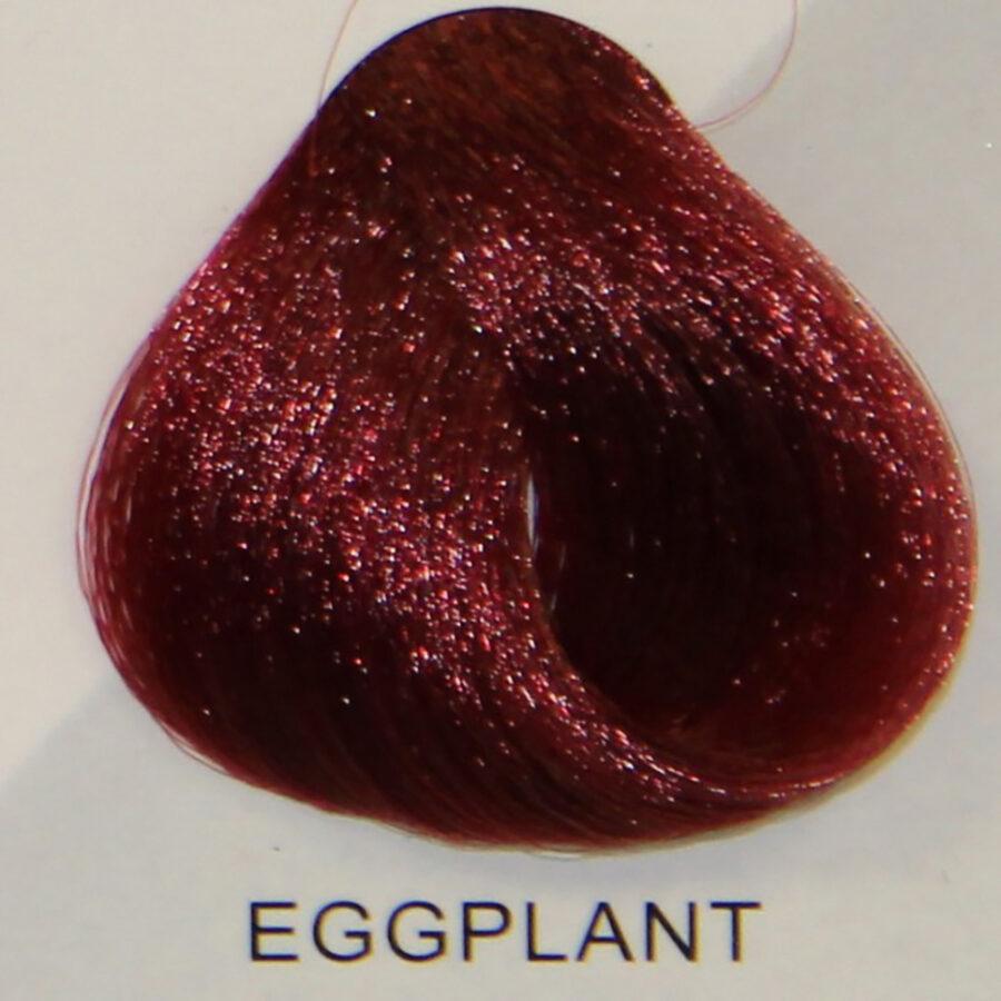 STARGAZER Eggplant