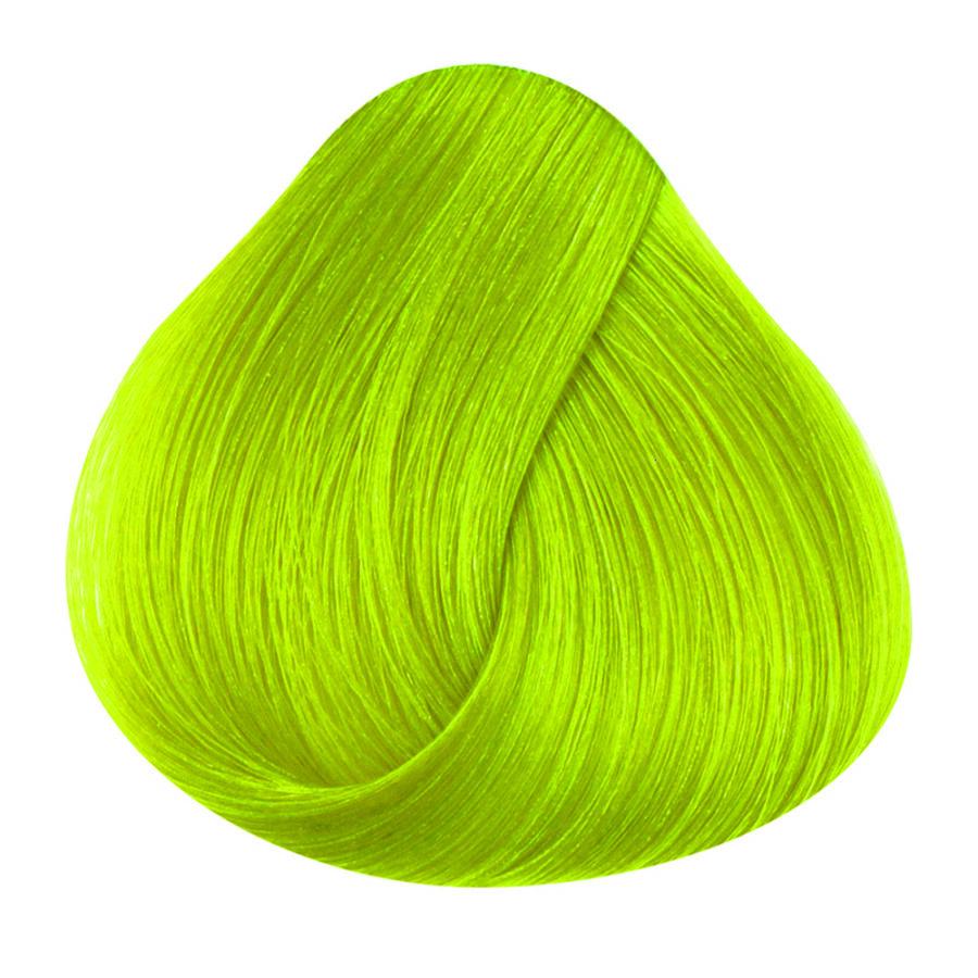 STARGAZER Lime