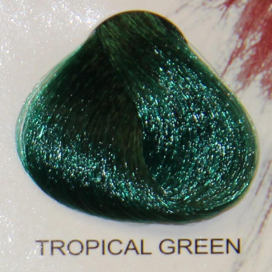 STARGAZER Tropical Green