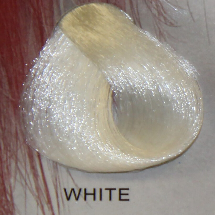 STARGAZER White